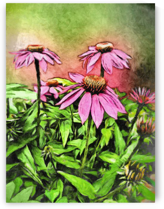 Water Color Purple Cone Flower by Leslie Montgomery