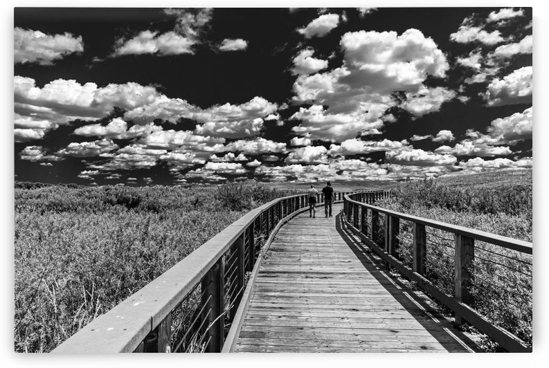 Walking To The Clouds.BW by Garald Horst