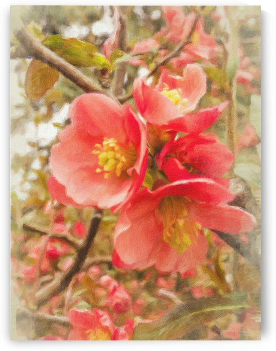 Quince Branch Vertical by Leslie Montgomery