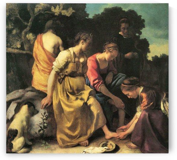 Diana and her nymphs by Vermeer by Vermeer