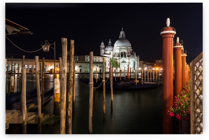 Venice Italy Midnight - Santa Maria della Salute Through a Forest of Paline by GeorgiaM