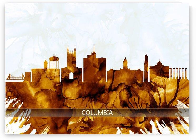 Columbia Missouri Skyline by Towseef