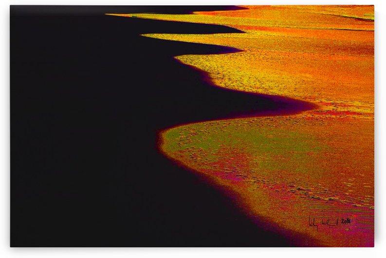 Beach II by Carlos Wood