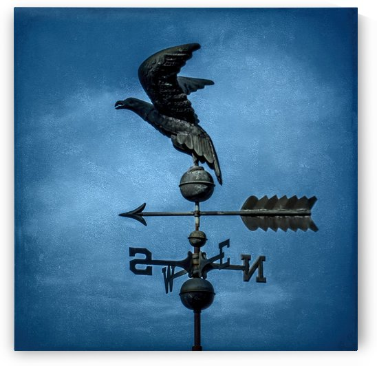 Sky King   Eagle Weather Vane by Leslie Montgomery
