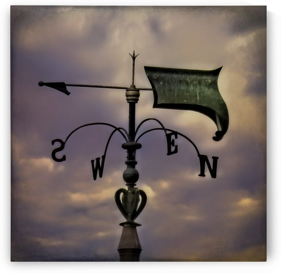 Hand Forged Medieval Weather Vane by Leslie Montgomery
