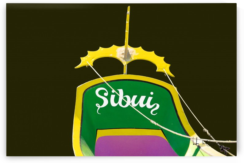 Boat XIII by Carlos Wood