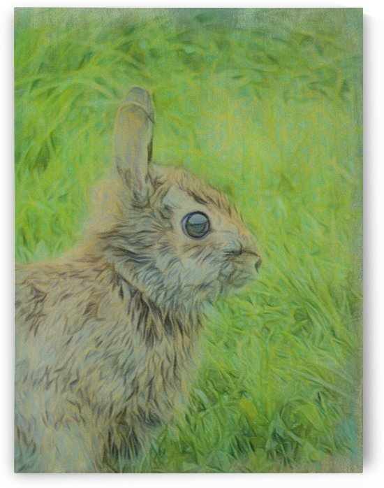 Some Bunny To Love by Leslie Montgomery