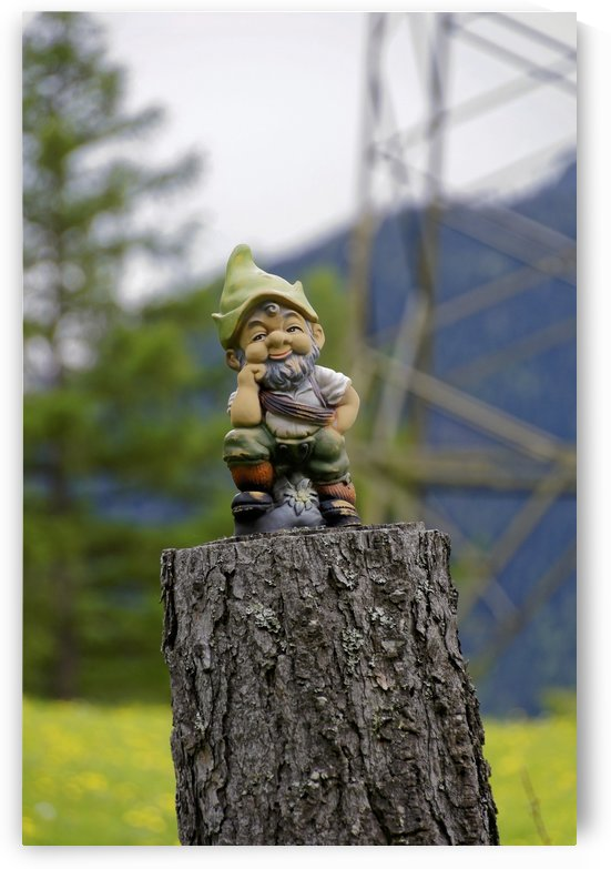 Funny Garden Gnome on Tree Stump is Watching You by Swiss Art by Patrick Kobler