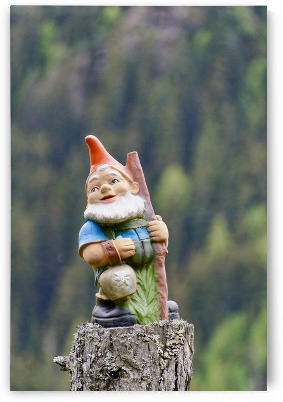Garden Gnome fallen in Love with Nature and the Cows by Swiss Art by Patrick Kobler