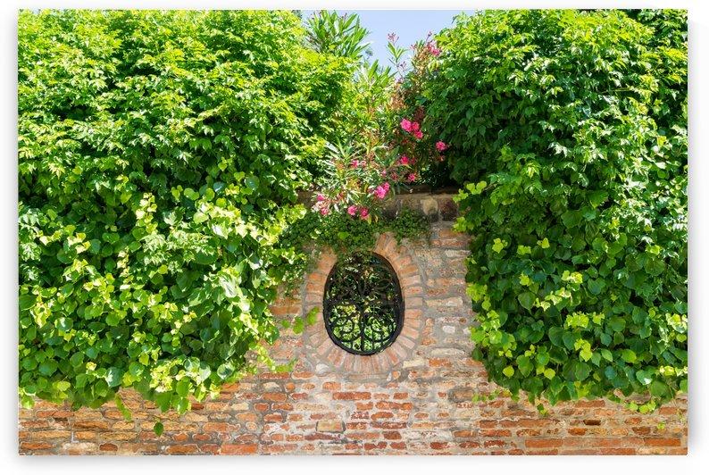 Splendid Venetian - Ubercharming Garden Window with Ivy and Oleander by GeorgiaM