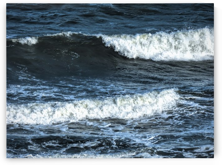 Ocean Motions by Leslie Montgomery