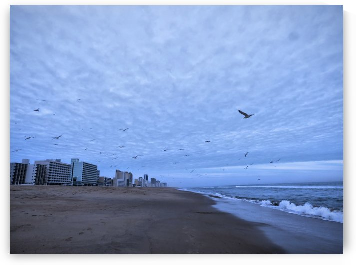 Virginia Beach From Waves To Boardwalk by Leslie Montgomery