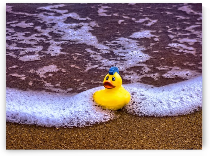 Rubber Ducky by Leslie Montgomery