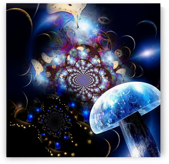 Hallucinogenic Mushroom by Bruce Rolff