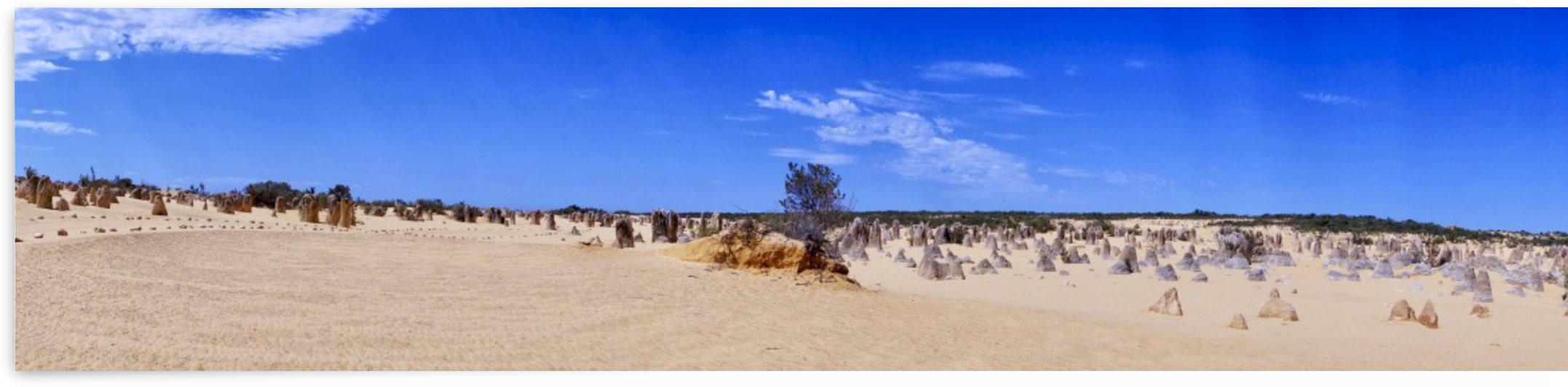 Panorama in Nambung National Park Australia by Swiss Art by Patrick Kobler