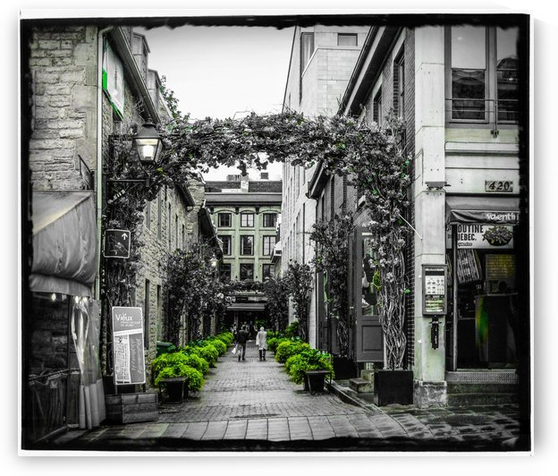 Matin Champetre au Vieux Montreal  by Myurbanvision