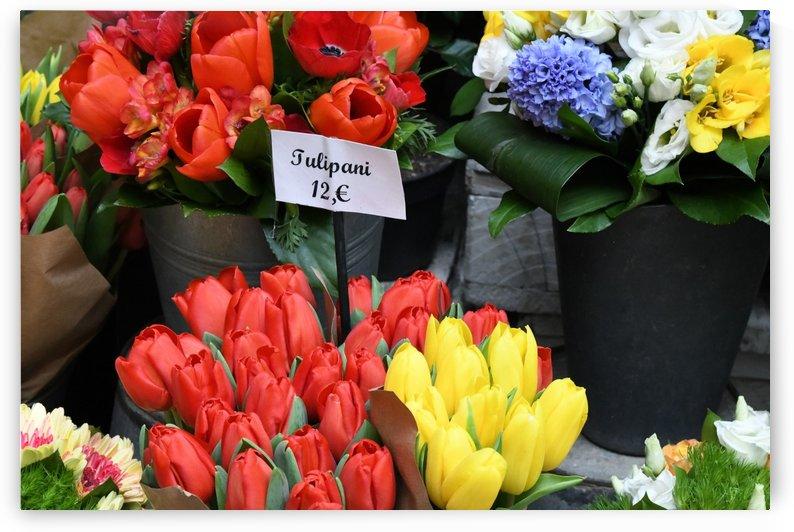 Tulipani by H.Hart Photography