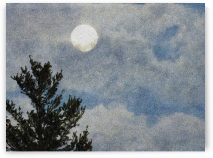 Full Moon In A Cloudy Evening Sky by Leslie Montgomery