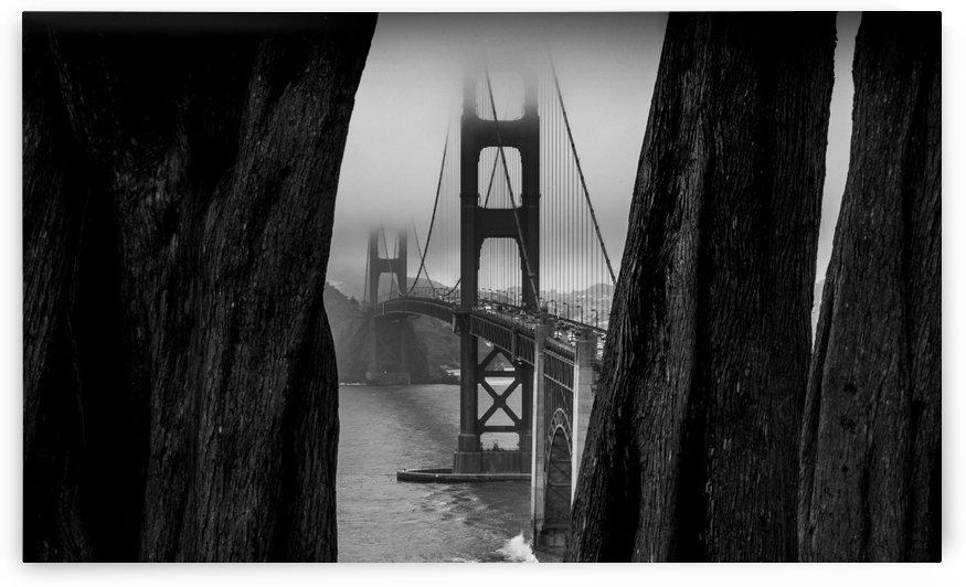 The Bridge by Verinder Grewal Photography