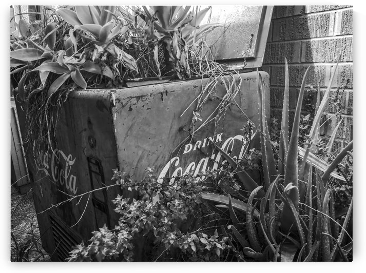 Coke machine converted to flower garden by Downundershooter
