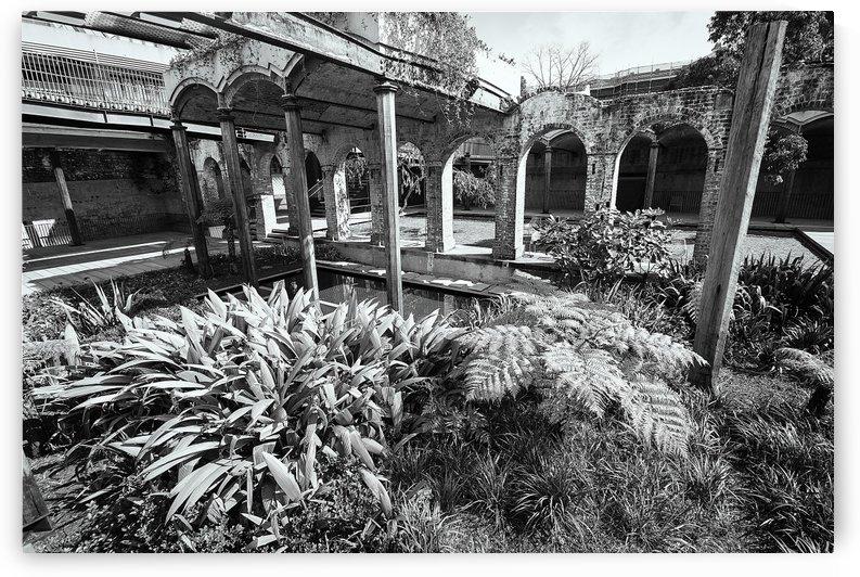 Paddington Reservoir gardens by Downundershooter