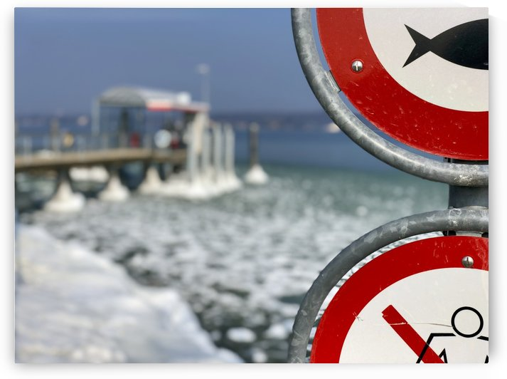 Almost Frozen Harbour in Bottighofen at the lake of Constance Red Signs of No Fishing and Swimming II by Swiss Art by Patrick Kobler