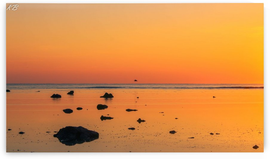 Calm Waters CIS Point by Koisen Wanori