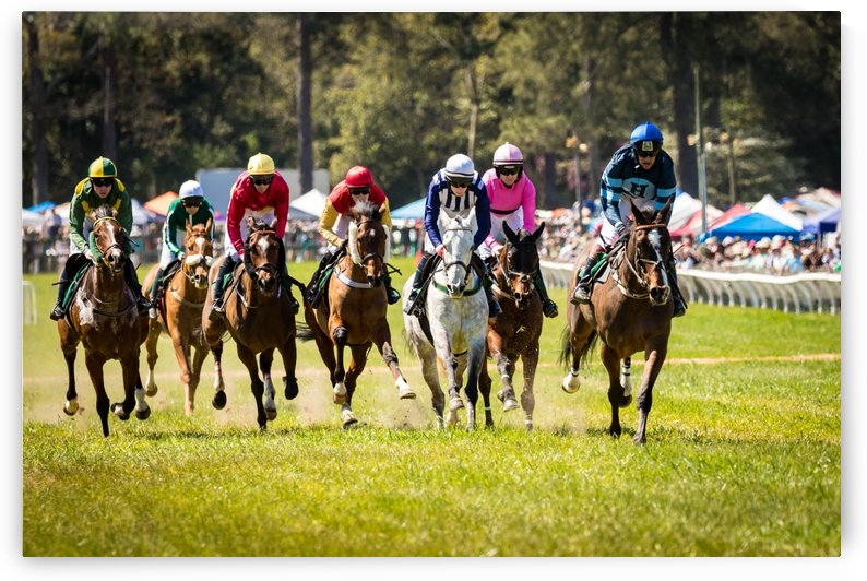 Aiken Steeplechase 4998 by The Photourist - Sanjeev Singhal