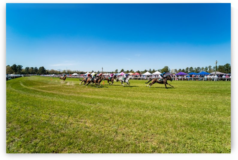 Aiken Steeplechase 3264 by The Photourist - Sanjeev Singhal