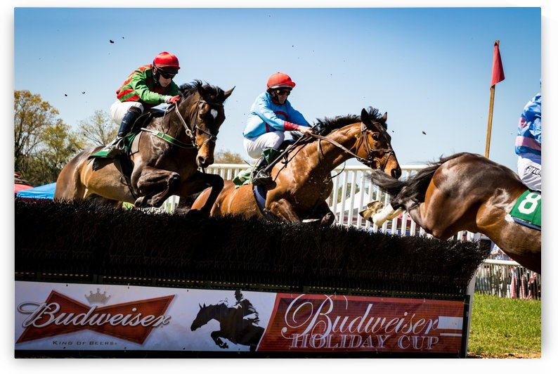 Aiken Steeplechase 5104 by The Photourist - Sanjeev Singhal