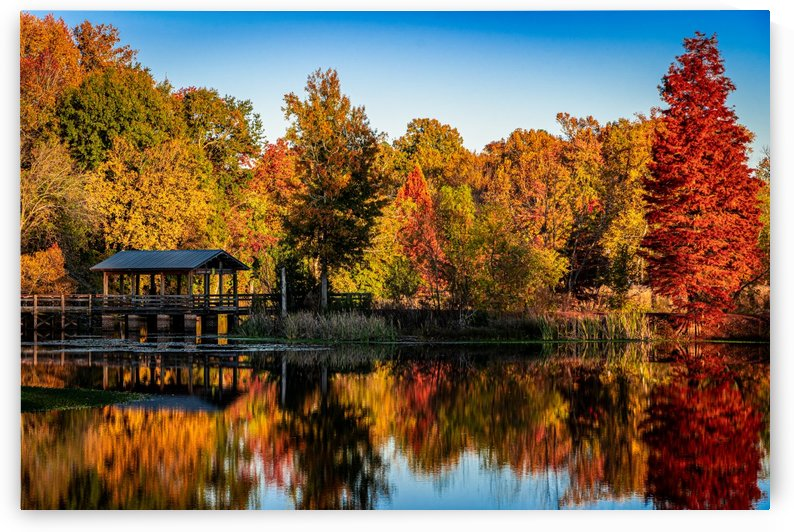 Brick Pond Park in the Fall   North Augusta 7201 by @ThePhotourist