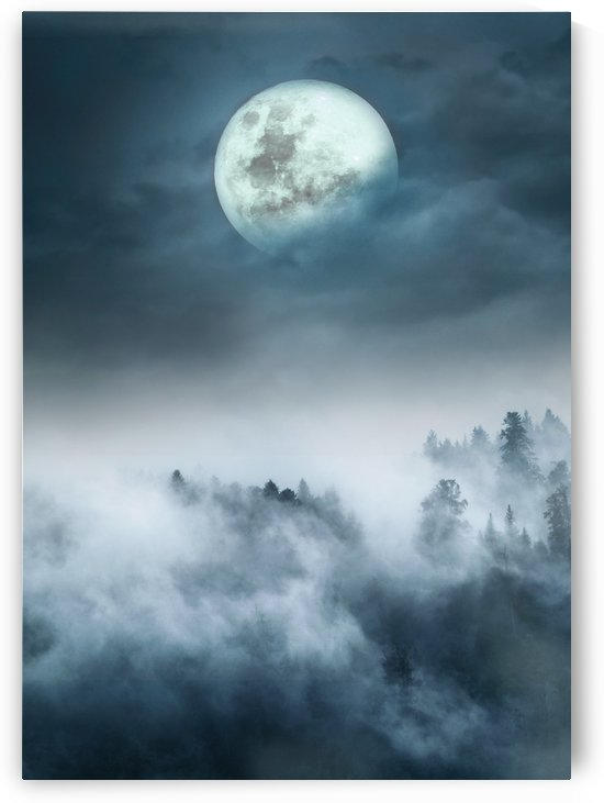 Foggy Moon Night Scene by Artistic Paradigms