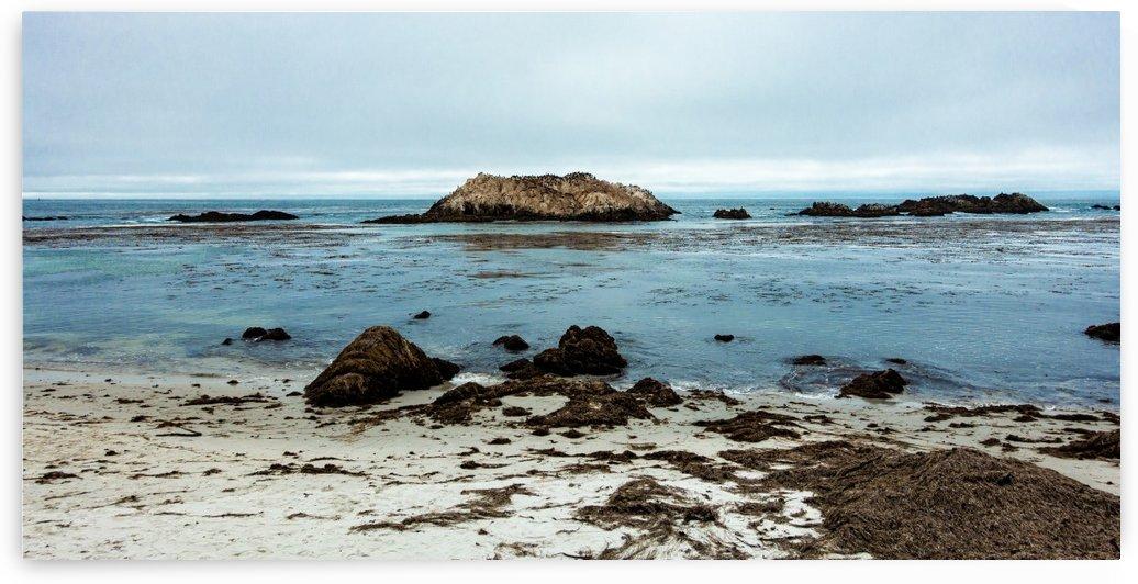 Monterey Peninsula 8761 by @ThePhotourist