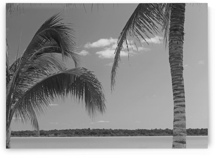 At Peace B&W by Gods Eye Candy