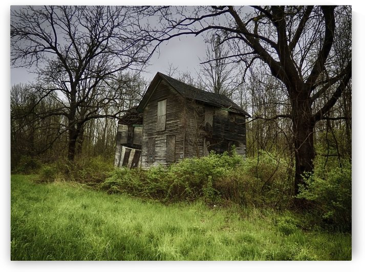 Abandoned Dreams by Leslie Montgomery