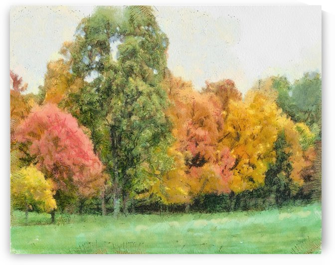 Autumn Glory In A Row by Leslie Montgomery