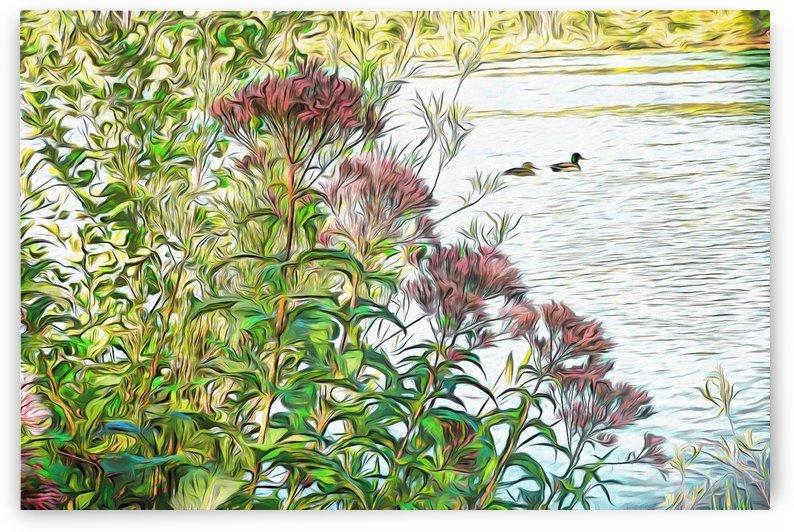 Behind The Milkweed by Leslie Montgomery