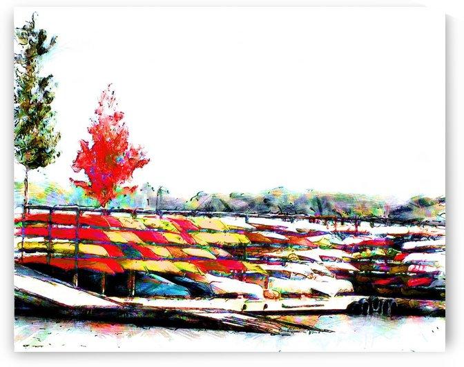 Canoe Rack by Leslie Montgomery