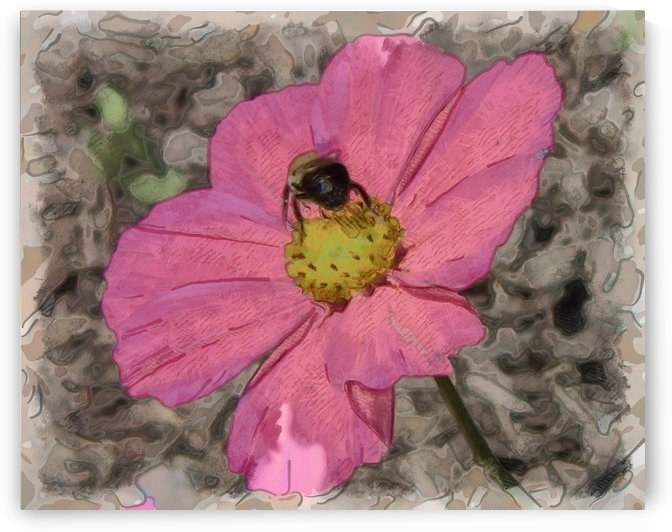 Busy Bee by Leslie Montgomery