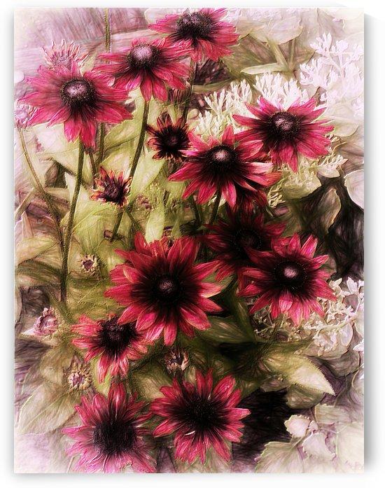 Cherry Brandy Rudbeckia by Leslie Montgomery