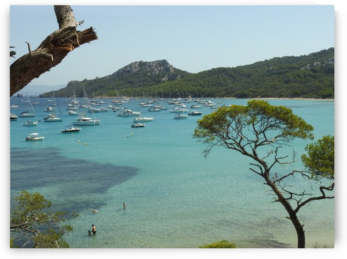 beach of the island of porquerolles by James Cool