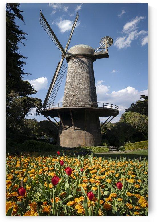 Dutch Windmill San Francisco by Gary Geddes