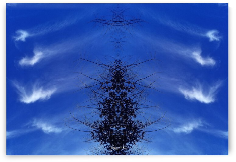 Cloudes 85 by Carlos Manzcera