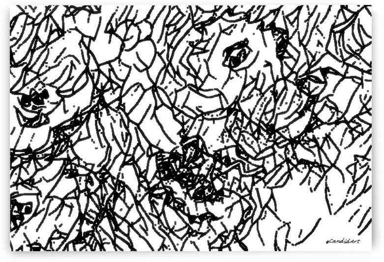 Black & White Art Transparent by Candid Art