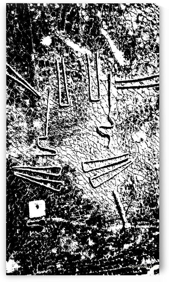 No.1 Black & White Design Art Texture by Candid Art