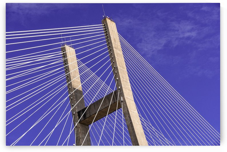 Talmadge Memorial Bridge   Savannah 04212 by @ThePhotourist