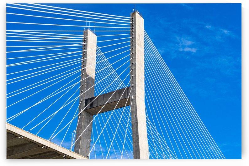 Talmadge Memorial Bridge   Savannah 04190 by @ThePhotourist