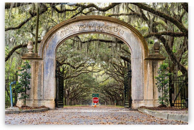 Wormsloe Plantation   Savannah 04028 by @ThePhotourist