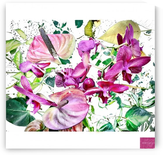 Pink Orchids and Tropicals by BotanicalArt ca