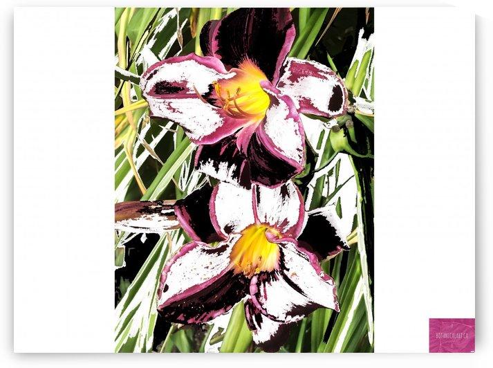 Spring Garden 1 by BotanicalArt ca